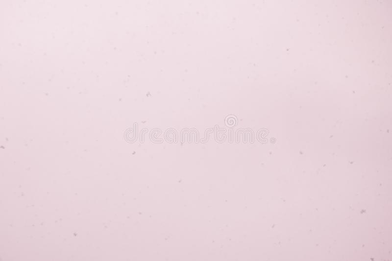 Realistic Glitter Exploding on Black Background. The perfect for visual effects, compositing, and motion graphics. Use blending mo. De screen royalty free stock photos