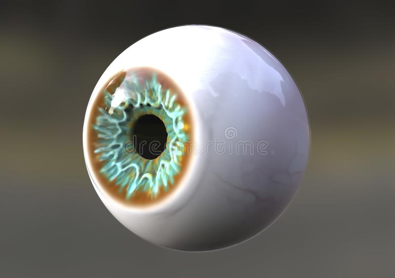 Realistic human eye. Looking to the side, 3D illustration royalty free illustration