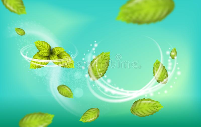 Realistic Illustration Flying Mint Leaf Vector stock illustration