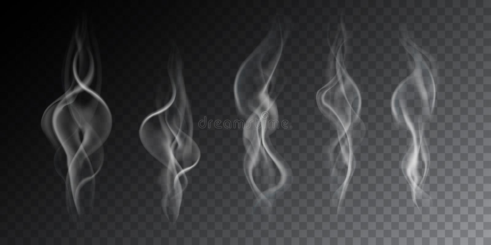 Realistic illustration of haze, cigarette smoke or steam over a hot drink, isolated on a transparent background, vector vector illustration