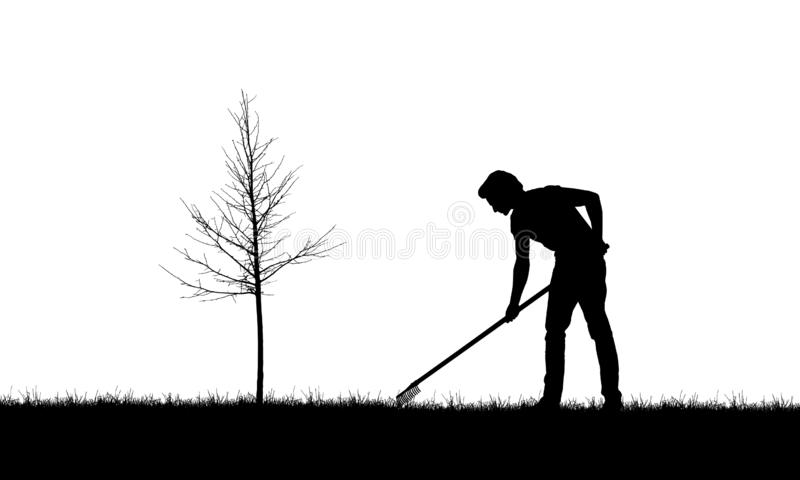 Realistic illustration with silhouette of a gardener man with rakes. Lawn and young tree without leaves, isolated on white. Background - vector vector illustration