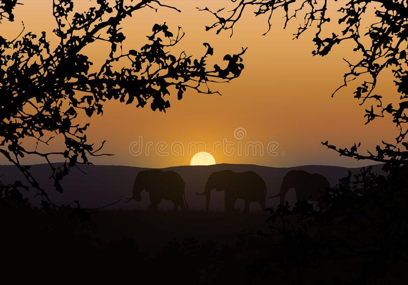 Realistic illustration of silhouettes of three elephants. They go in savanna with saffron grass in africa. Branches of trees with royalty free illustration