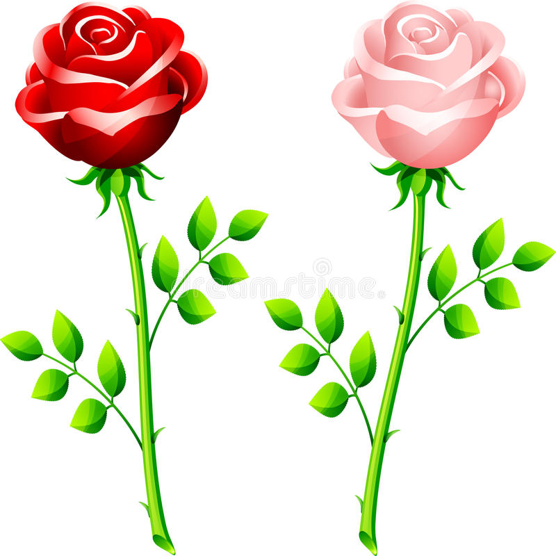 Download Realistic Red And Pink Rose On A Stem Stock Illustration - Image: 12393702