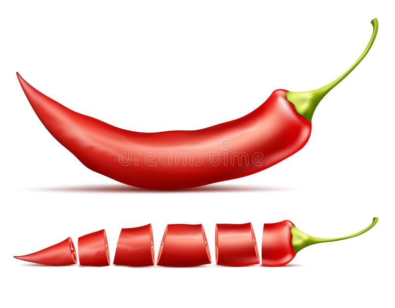 Realistic red pod of hot chili pepper. Realistic illustration of red hot chili pepper, whole and sliced, isolated on background. Red pod of cayenne, traditional vector illustration
