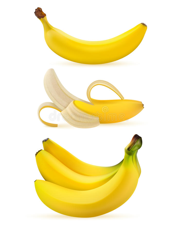 Realistic ripe bananas isolated on a white background. vector illustration