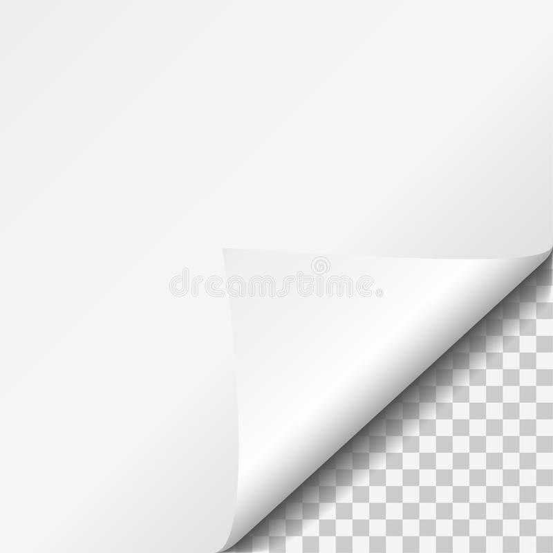 Realistic vector illustration curled white paper corner with transparent vector illustration
