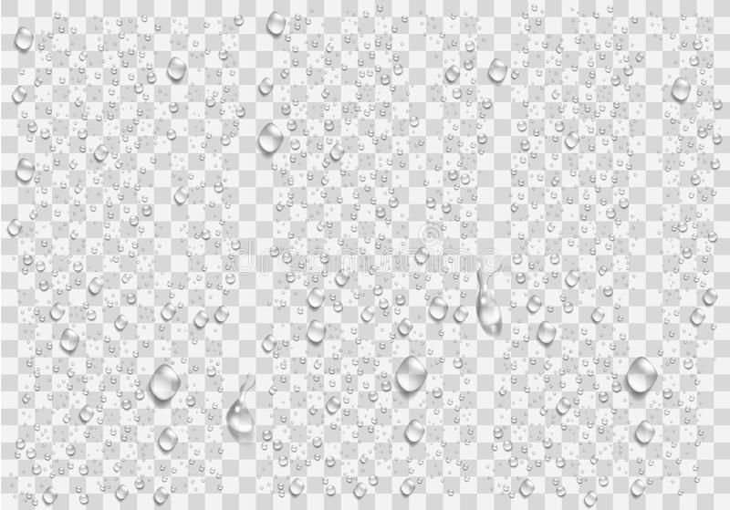 Realistic water droplets on the transparent window. Vector stock illustration