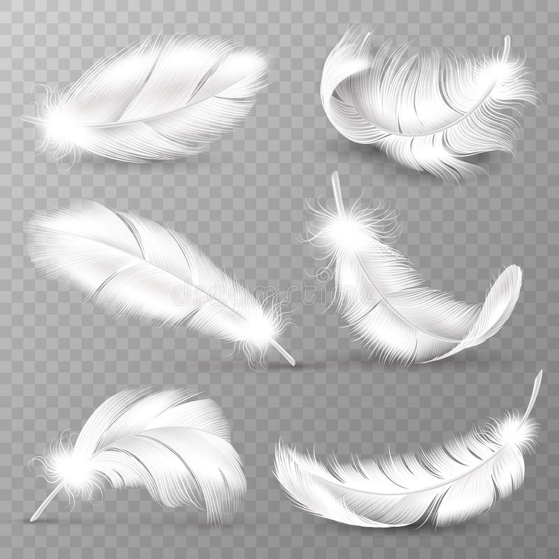 Realistic white feathers. Birds plumage, falling fluffy twirled feather, flying angel wings feathers. Realistic isolated stock illustration