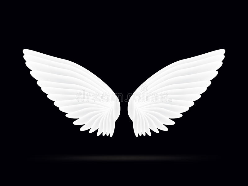 Realistic white wings on a black background royalty free stock images