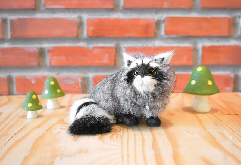 Realistic Wild Racoon. Animal Replica Prop Fur Toy, for Decoration royalty free stock image