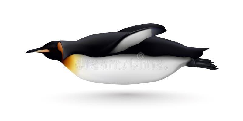 Realistico di nuoto del pinguino isolato illustrazione di stock