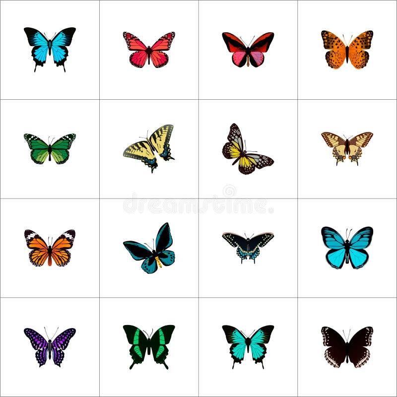Realistisch de Zomerinsect, Danaus Plexippus, Azure Peacock And Other Vector-Elementen Reeks Schoonheids Realistische Symbolen oo stock illustratie
