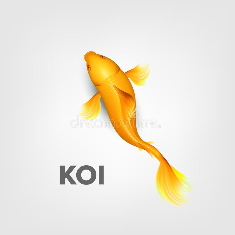 Realistisch Oosters Helder Geel Koi Fish Vector royalty-vrije illustratie