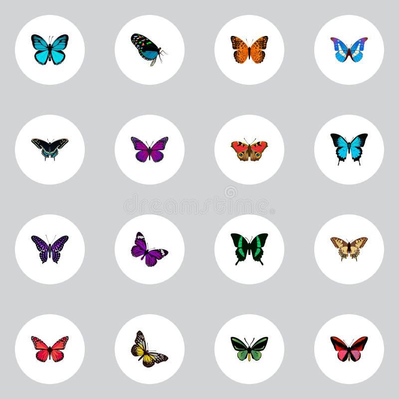 Realistisch Tiger Swallowtail, de Zomerinsect, Azure Peacock And Other Vector-Elementen Reeks Motten Realistische Symbolen ook vector illustratie