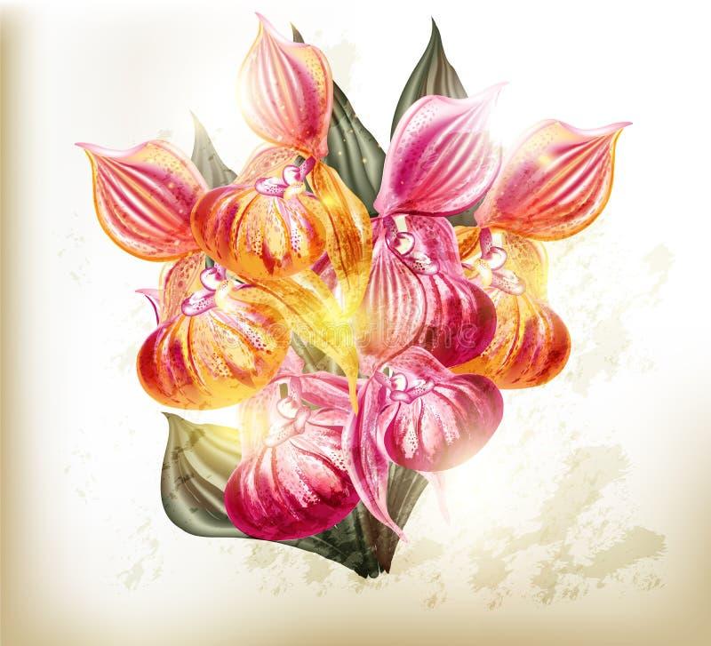 Realistisch vectorboeket van orchideeën vector illustratie
