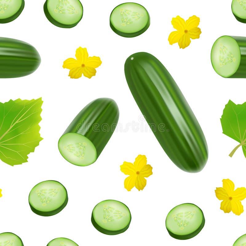 Realistische 3d Groene Gehele Komkommer en van het Plakken Naadloze Patroon Achtergrond Vector vector illustratie