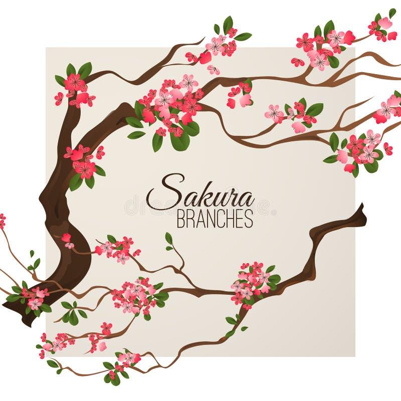 Realistische de kersentak van sakurajapan met bloeiende bloemen vectorillustratie stock fotografie