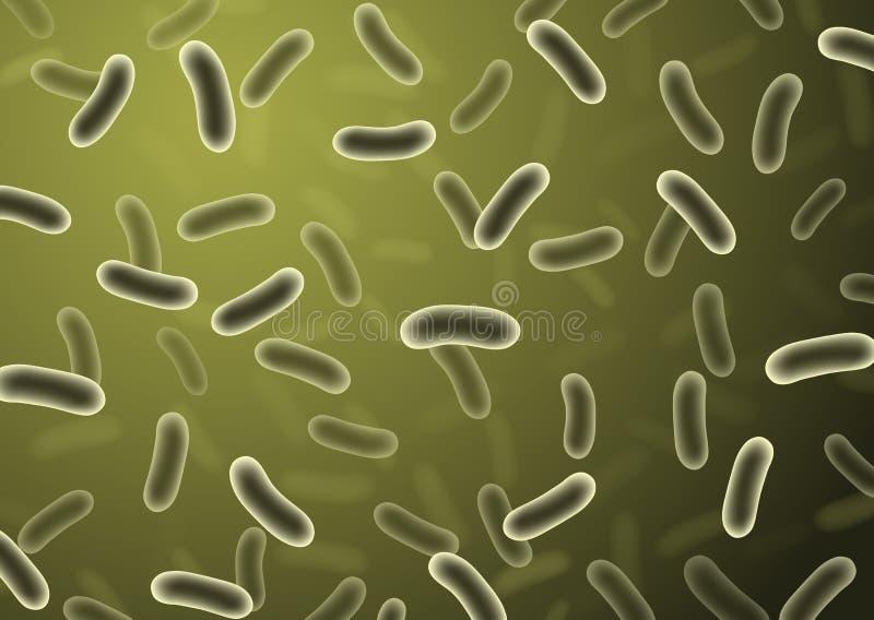 Realistische Detailbakterienzellen mit Grün verwischten Hintergrund - lizenzfreie abbildung
