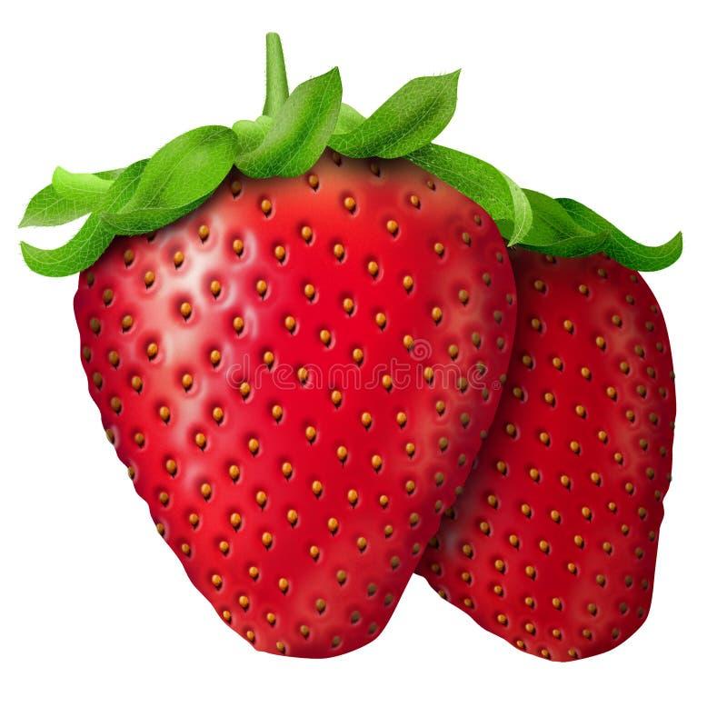 Realistische Erdbeere vektor abbildung