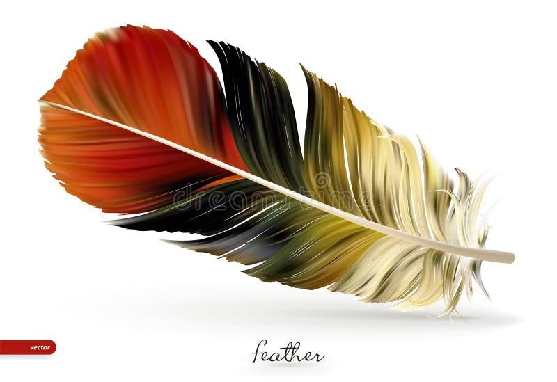 Realistische Federn - Vektorillustration Getrennt auf weißem Hintergrund lizenzfreie abbildung