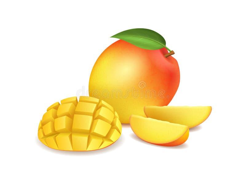 Realistische Gedetailleerde 3d Gehele Mango en Gesneden Vector stock illustratie