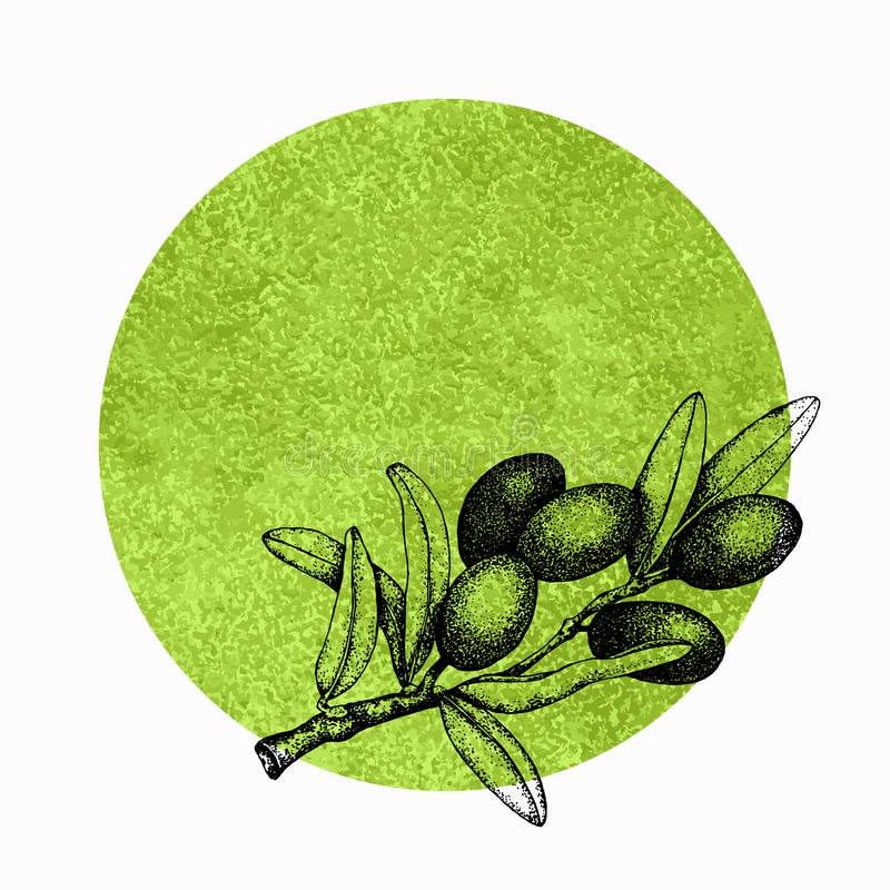 Realistische illustratie van zwarte en groene die olijventak op groene achtergrond wordt geïsoleerd Ontwerp voor olijfolie, natuu royalty-vrije stock foto's