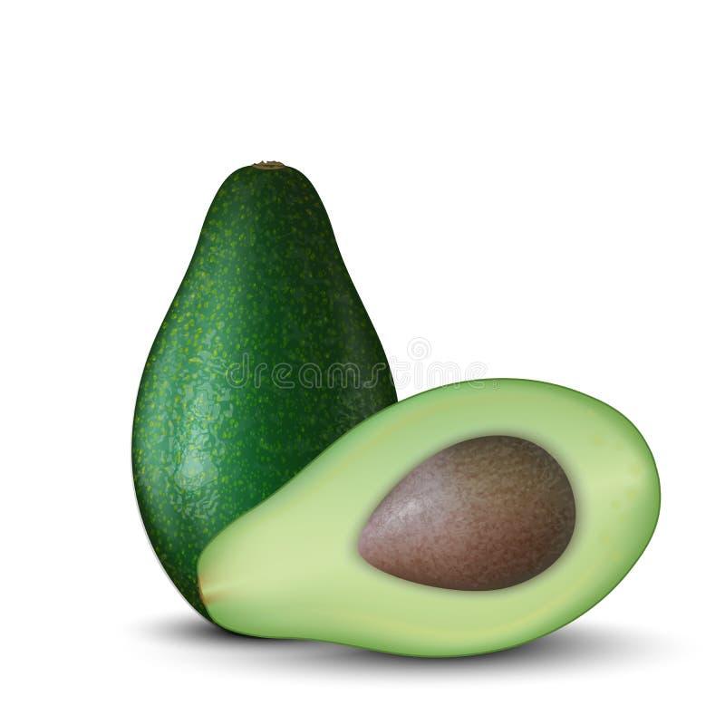 Realistische Illustration 3d der geschnittenen grünen Avocatofrucht Bunte Avocados mit Samen Gut für Verpackungsgestaltung und An lizenzfreie abbildung