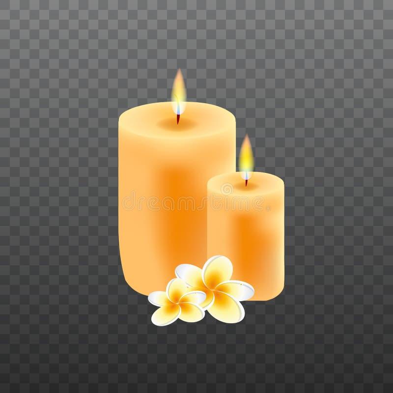 Realistische Kerzen mit Plumeriablumen vektor abbildung