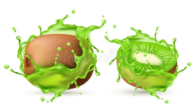 Realistische Kiwi des Vektors 3d im Grün spritzt stock abbildung