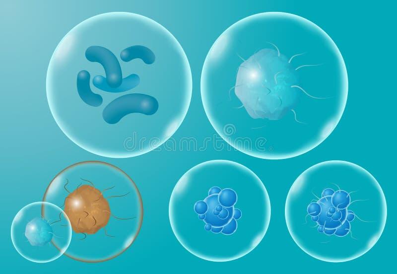 Realistische mikroskopische Viren und Bakterien lokalisierten Vektorsatz stock abbildung