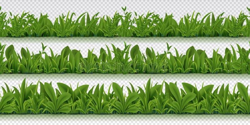 Realistische naadloze grasgrens De lentepatroon met 3D de lentekruiden, realistische groene grasachtergrond Ge?soleerde vector royalty-vrije illustratie