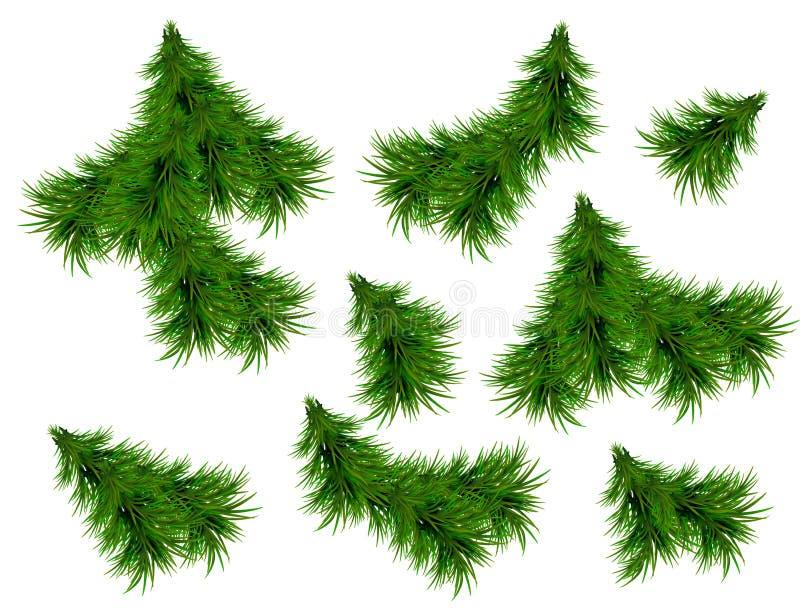 Realistische Reeks Groene Spartakken Kerstboomtakken op witte Achtergrond voor Groetkaart worden geïsoleerd, Vliegers, Banners di royalty-vrije illustratie