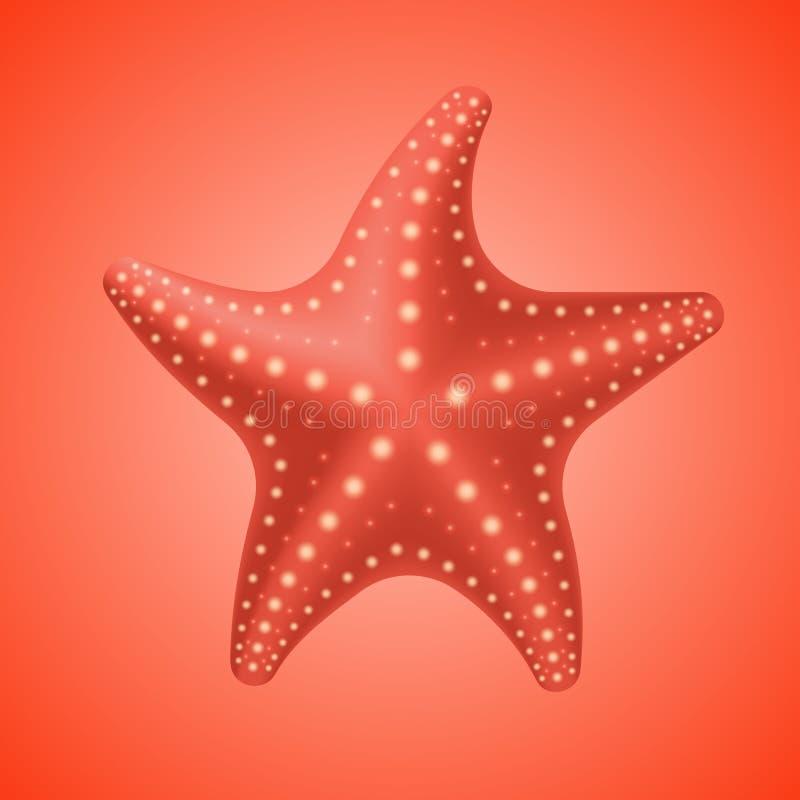 Realistische rote Starfish, Ikone lizenzfreie abbildung