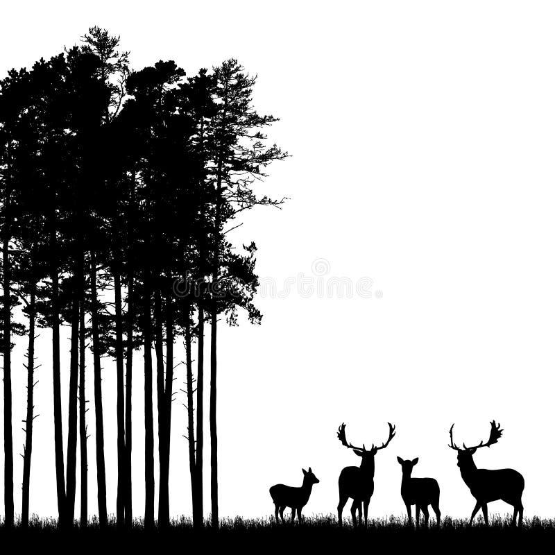 Realistische schwarze Illustration der stehenden Rotwildherde mit den Geweihen, Gras und hohem Baum im Wald lokalisiert auf weiße lizenzfreie abbildung