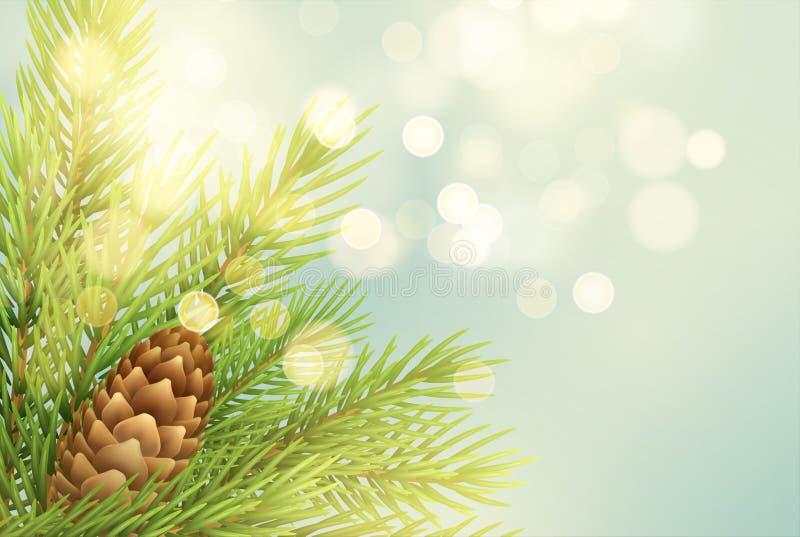Realistische sparrentak met pineconeillustratie royalty-vrije illustratie