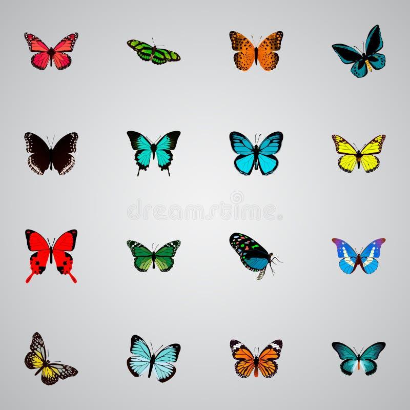 Realistische Spicebush, Archippus, Azure Peacock And Other Vector-Elementen De reeks Motten Realistische Symbolen omvat ook Rood royalty-vrije illustratie