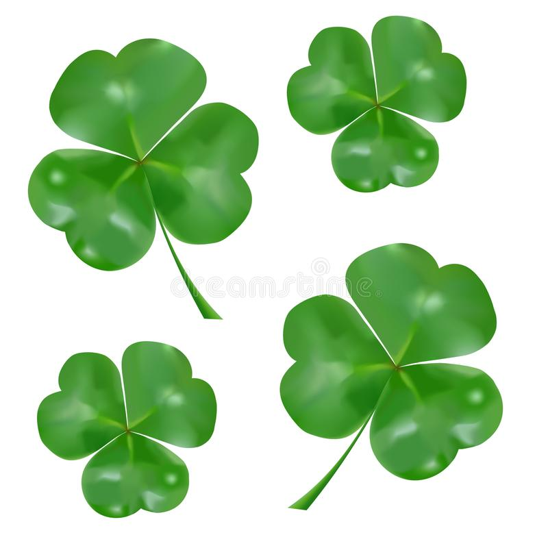 Realistische three-leaved klaver Symbool van St Patrick ` s Dag royalty-vrije illustratie