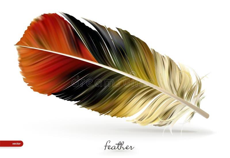 Realistische veren - vectorillustratie Geïsoleerdj op witte achtergrond stock illustratie