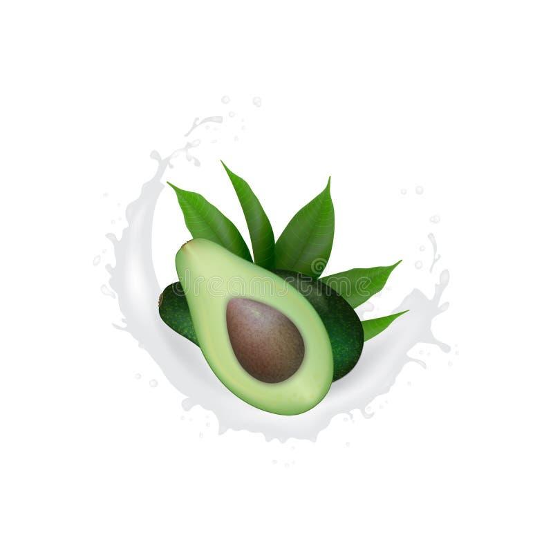 Realistische Verse Groene de yoghurtplons van het avocadofruit Avocado Half met bladeren in wervelingsmotie het bespatten Biologi stock illustratie