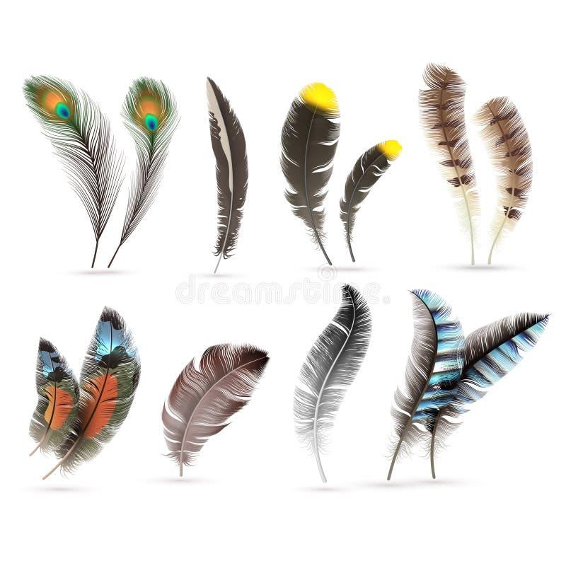 Realistische vogelveren Gedetailleerde kleurrijke veer van verschillende vogels 3d vectordieinzameling op witte achtergrond wordt royalty-vrije illustratie