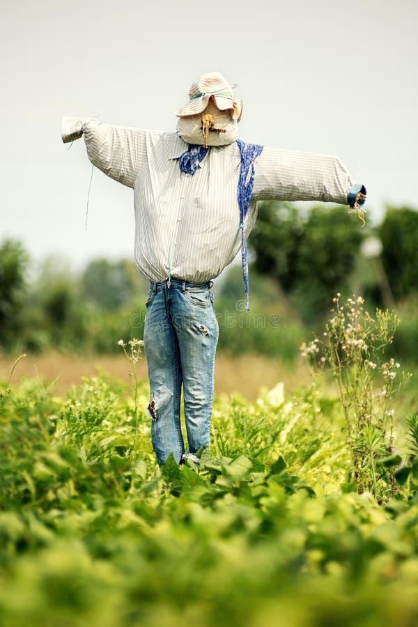 Realistische vogelverschrikker in oude jeans en hoed stock afbeelding
