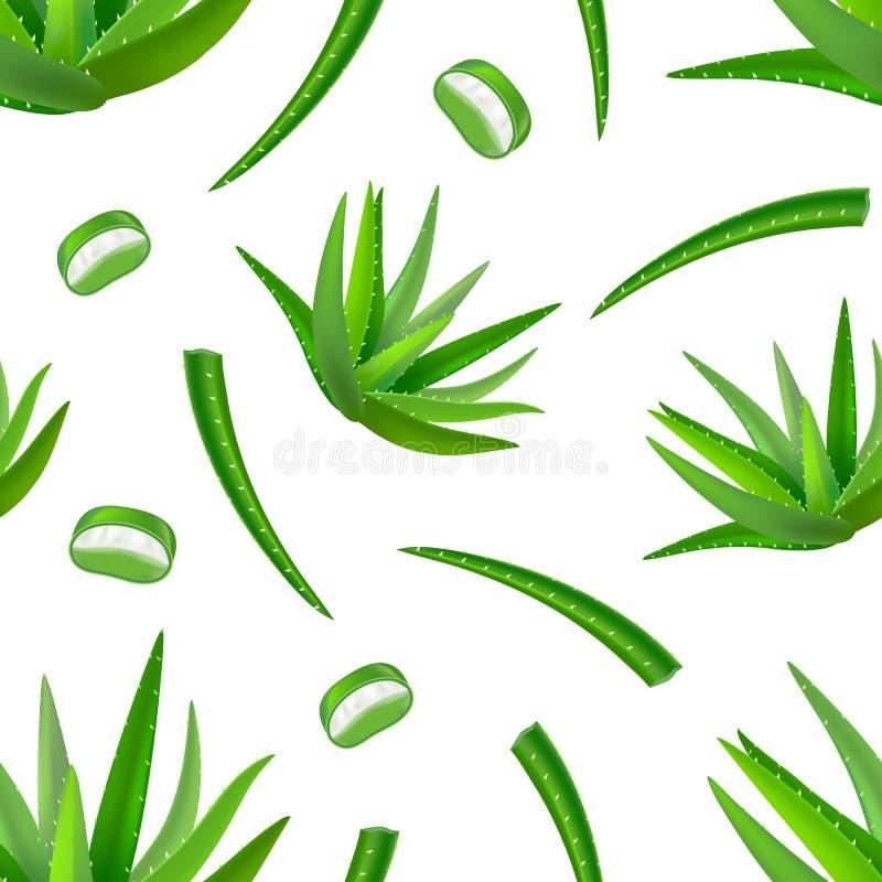 Realistischer ausführlicher Aloe-Vera Green Plant Seamless Pattern-Hintergrund Vektor lizenzfreie abbildung