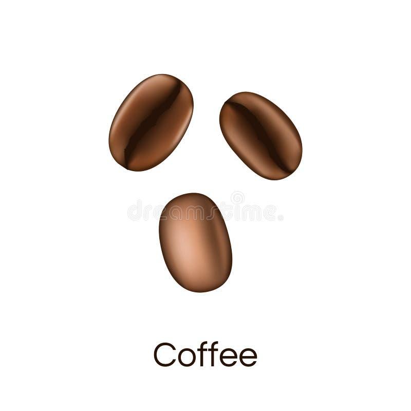 Realistischer Blick der Kaffeebohnen lokalisiert auf weißem Hintergrund Vektor stock abbildung
