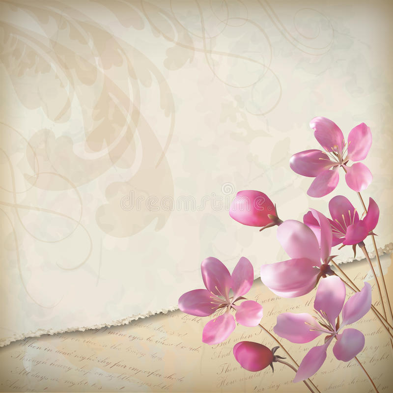 Realistischer Blumenvektorfrühlingshintergrund vektor abbildung