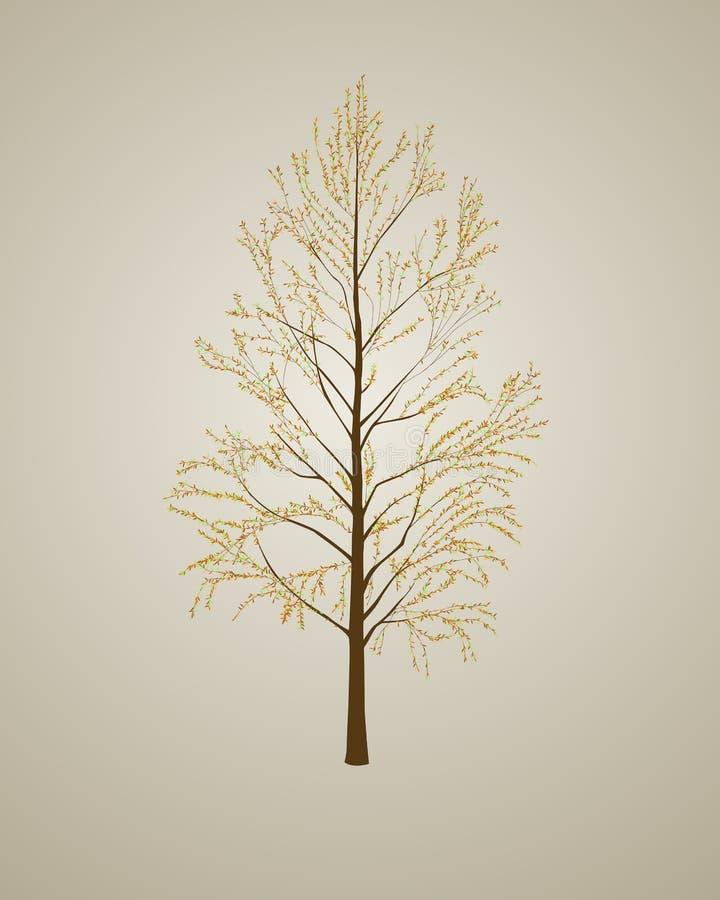 Realistischer Herbstbaumhintergrund lizenzfreie abbildung
