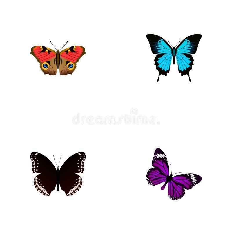 Realistischer Papilio Ulysses, Spicebush, amerikanische Distelfalter-And Other Vector-Elemente Satz des Schmetterlinges realistis lizenzfreie abbildung