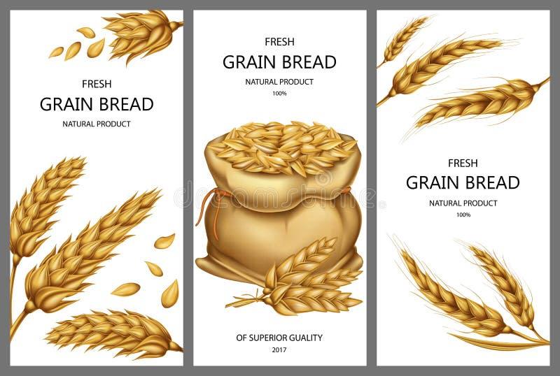 realistischer Sack mit Körnern, Weizenähren vektor abbildung