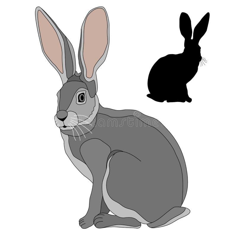 Realistischer Satz der grauen Hasen des schwarzen Schattenbildes lizenzfreie abbildung