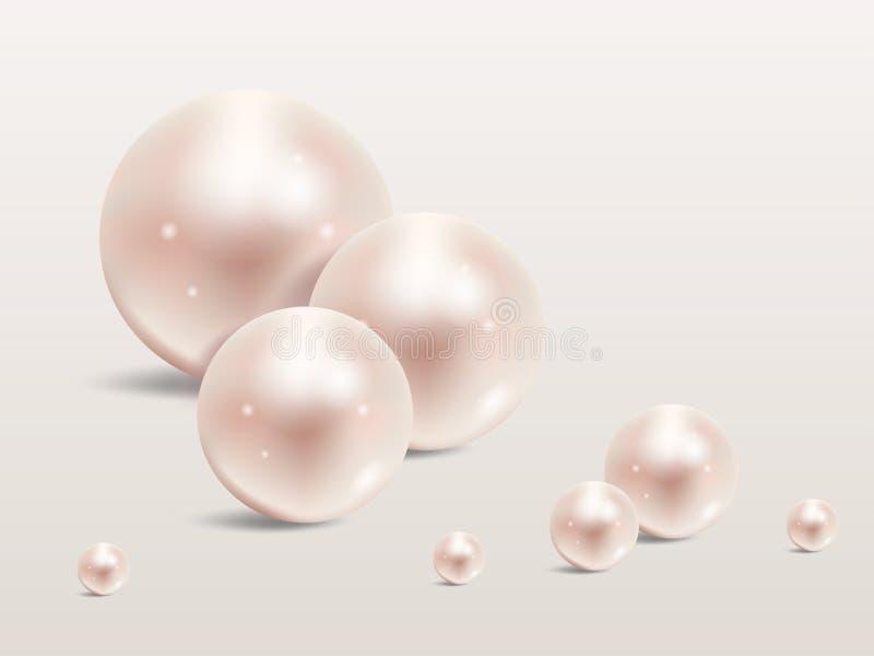 Realistischer Satz der Perle auf weißem Hintergrund Kostbare Perle in der Bereichform Perle ist glatter Luxusstein lizenzfreie abbildung
