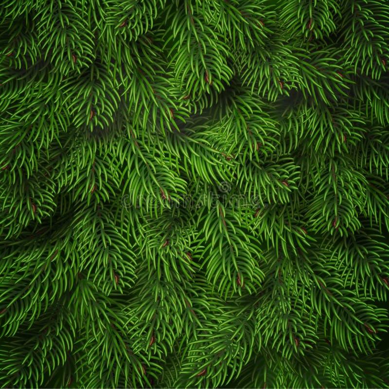 Realistischer Weihnachtsbaumasthintergrund Ausführlicher Weihnachtsbaumasthintergrund Grüne Nadeln auf Niederlassungen stock abbildung